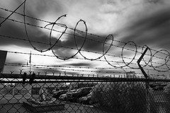 Barbed Wire Fence (Mark Kosobiecki) Tags: fence wire barbedwire sky black monochrome building light wirefencing barrow cloud outdoor transportation jail sitting vehicle blackandwhite wheelbarrow barrier top cage monochromephotography bird officebuilding photography security architecture white web photo margin atmosphere hanging steel atmosphereofearth small enclosure large iron phenomenon net reflection table danger meteorologicalphenomenon rain electricity line tree