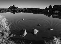 Ripples... (l4ts) Tags: landscape staffordshire staffordshiremoorlands peakdistrict darkpeak theroaches doxeypool heather moorland gritstoneedge ripples blackwhite reflections