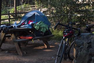 Mount Tam Pan Toll camping