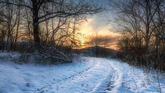 Snowy Path (Janos Puskas) Tags: snow winter captainwinter path forest woodland salgótarján sky sunset aloneintheforest uwa tokina116 tokina1116