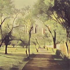 Jardim Botânico - Curitiba/Brasil (AmandaSaldanha) Tags: green nature natureza parque curitiba bahia brasil paraná jardimbotânico