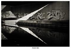 Rocket Man (blueP739) Tags: olympus om4 om1n olympusom om3ti om2sp om10 om1 om3 olympusom1 orange olympusplustekplustek7200om4 pussy plustek7200 bw blackwhite graffiti camera35mm canal birmingham eltonjohn bernietaupin rodinalr09 reflections rocketman lyrics highcontrast gravelyhillinterchange spaghettijunction lines shadow vivitar19mm rolllei rpx25