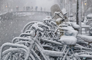 A Dutch bicycle stand covered with fresh snow