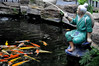 Where's the catch? (Roving I) Tags: statues fish fishermen ponds koi cafes carp colour tourism truclamvien bamboogarden restaurants danang decor dining venues vietnam