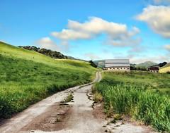 barn 09 1 (18)c11x14 (The Phillips Project) Tags: farm road barn green california blue