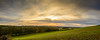 Yorkshire sunset (stevefge) Tags: 2017 autumn beverley uk panorama yorkshire eastyorkshire sky sunset sundown cloud wolken hills trees bomen drama reflectyourworld