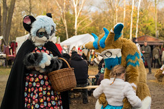 SAM_3280.jpg (Silverflame Pictures) Tags: cosplay castlefestwinteredition november 2017 furry dutchangeldragon costumeplay fursuiting furrie landgoedkeukenhof nederland lisse