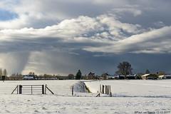 Rain is coming, 12-12-2017 (Paul van Baarle) Tags: nikon d800 nootdorp randstad zuidholland sneeuw snow schnee winter clouds wolken neige hiver