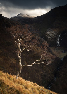 Steall in Autumn