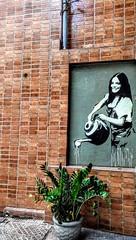 imitando a vida                 --          grafite 34 (luyunes) Tags: artederua artepopular arteurbana grafite arte rua motoz luciayunes streetart