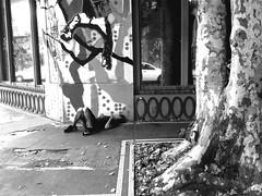 Descartado y tirado (Alejandro Malowicki) Tags: niño jóven calle acostado durmiendo pobreza droga drogado desmayado enfermo solo soledad sin piedad