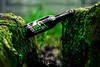 DSC_2950 (vermut22) Tags: beer browar butelka birra beertime brewery beers beerme bottle biere