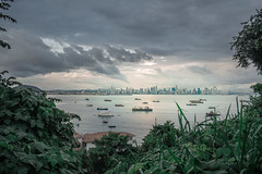 New angle on Panama (markdnormann) Tags: jigsaw scene panama city impending storm tropical bay plantlife framing