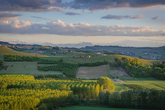 castiglione falletto GZCVzoom2 (36 of 1) (sassiitalytours) Tags: wine piemonte castle italy italia winecountry vino