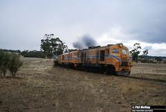 2895 XA1412 XA1403 freight to Katanning ex Kojonup 2 April 1982 (RailWA) Tags: railwa philmelling westrail 1982 xa1412 xa1403 freight katanning ex kojonup