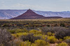 Valley of the Gods, Bears Ears National Monument (Jeffrey Sullivan) Tags: bearsearsnationalmonument blm bureauoflandmanagement utah usa octoer canon digital rebel xti photo travel photography copyright 2007 jeff sullivan valley gods creativecommons attributionnoncommercial ccbync