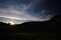 Evening on Mangere Mountain (Janek Kloss) Tags: mangere mountain manukau auckland