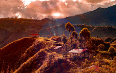 (brunomalfondet) Tags: panorama contrejour colombie tierradentro sliderssunday elitegalleryaoi bestcapturesaoi aoi