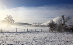 Morning mist at Arley (ralph.ward15) Tags: steam severnvalley