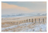December Pastels II (calderdalefoto) Tags: hebdenbridge calderdale westyorkshire winter yorkshire snow frost pastel cold moors pennines