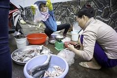 around the market (kuuan) Tags: chợphúnhuận caothắng voigtländerheliarf4515mm manualfocus mf voigtländer15mm aspherical f4515mm superwideheliar sonynex5n apsc hochiminhcity hcmc saigon vietnam street market fish