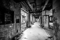 Abandoned hotels in Kupari (Czzz) Tags: dubrovnik dubrovnik2017 kupari kuparihotels hotel abandoned house building ruin hotels complex croatia mediterranian yugoslavia shore resort