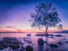 alor (sandilesmana28) Tags: sunrise stone water beach slow speed astoundingimage