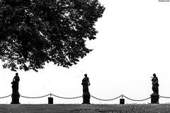 IMG_6557-1ri (kleiner nacktmull) Tags: apsc black blackandwhite bw canon camera deutschland dslr europa eos europe foto flickr flus fluss germany grey grau kleinernacktmull kolle kamera lens landscape landschaft monochrom monochrome nacktmull nature natur objektiv photo pfalz rhein rheinlandpfalz river rhine rheinsteig stephan stephankolle unesco burg castle ockenfels burgockenfels linz rhinelandpalatinate rheinland palatinate mittelrheintal worldheritagesite worldheritage heritage world welt welterbe 60d 70300mm 2017 schwarzweiss schwarzweis schwarz trail weis weiss white skulpturen skulptur sculpture sculptures art kunst architektur architecture gray rheintal