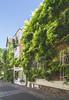 Floral City (Voyageur du week-end) Tags: france paris floralcity green wisteria vegetation tree city lovely urban village unexpected spring