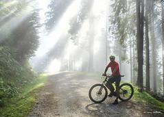 Entre luces y sombras (Jabi Artaraz) Tags: jabiartaraz jartaraz zb euskoflickr sol sun sombras sunset sunrise nature natura naturesfinest bicicleta bicicletaeléctrica montaña euskadi retrato autorretrato