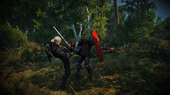 The Witcher 3 (bokkir) Tags: games videogames witcher thewitcher3 forest grass trees geralt