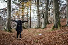 (Chris B70D) Tags: winter walk scotland edzell rocks solitude path autumn stream river water fall reflections light scene colours orange brown tree leaves nature natural photogenic glare long exposure bridge texture contrast figure person form shape scottish fresh air 70d outdoors canon