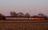 Fresh Commuter Power in KS (Jeff Carlson_82) Tags: septa acs64 marc siemens charger kp up uprr salinasub 901 80 81 82 rossville fresh new goldenhour cornfield commuter train railroad railfan railway siix
