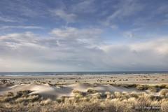 Zandmotor (Pieter Musterd) Tags: zandmotor monster duinen helmgras noordzee zee pietermusterd musterd canon pmusterdziggonl nederland holland nl canon5dmarkii canon5d