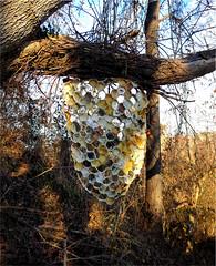 Hive1w (bgmills) Tags: environmentalart landart hive beeart textileart fiberart sculpture artonthetrail