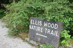 IMG_3115 (avsfan1321) Tags: connemaranationalpark connemara nationalpark ireland countygalway green lush landscape plants sign