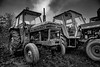 Old rusty history (janmn76) Tags: old worn tractor blackandwhite bw farm rusty faithful machine nikon nikonphotography d7200 tamron opdagdanmark visitdenmark classic clouds