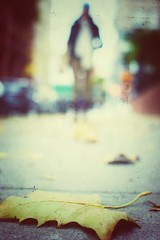 Stay visible (Mister Blur) Tags: low pointofview shallow depthoffield new york city lights nyc bokeh blur background girl fallen leaf fall autumn automne otoño street photography snapseed stay visible simple minds nikon d7100 35mm