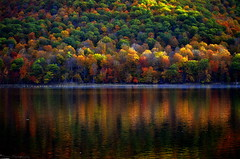 """The """"WOW"""" moment of Fall (Captions by Nica... (Fieger Photography)) Tags: canada colorful colors trees tree forest fall mountain autumn reflections reflection water landscape lake quebec outdoor october"""