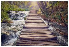 Nationalpark Plitvicer Seen I Kroatien (michadickmann) Tags: plitvička jezera plitvicer seen plitwitz plitwitzer nationalpark