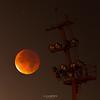 The Red Moon (enigmamcmxc) Tags: 2015 7d astro astrofotografia astrophotography blood bruno canon céu eclipse enigmamcmxc estrelas full lua moon night noite pereira portugal red sky stars super universe universo