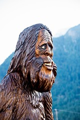 DSC_8074 (Copy) (pandjt) Tags: hope hopebc britishcolumbia sasquatchharry sasquatch bigfoot carving carvings chainsawcarving sculpture publicart artwalk hopeartwalk woodcarving artwork