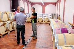 Weingut  Podere Cascina (HITSCHKO) Tags: weinkellerei wein weingut weinprobe poderecascina italien toscana toskana livorno bibbona ligurischesmeer