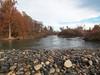 Lower Feather River (1 of 3) (Kuzidogblue) Tags: lowerfeatherriver optoutside blackfriday flyfishing spey