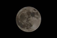 Full Moon 20171103 (Phil Ostroff) Tags: moon nikon d7000 astrotelescopes 80mm refractor full