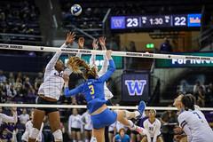 UW UCLA-FT4I1726 (Pacific Northwest Volleyball Photography) Tags: volleyball ncaa pac12 pac12vb uwhuskies washington ucla