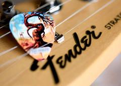Macro Monday-Member's choice-Musical Instrument (lynne186) Tags: macromonday musical instrument guitar fender memberschoice