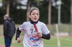 Cecilia Costantini