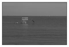 Le plongeoir... (De l'autre côté du mirOir...) Tags: leplongeoir saintpoldeléon finistère 29 eau mer littoral plage plagedesainteanne bretagne bzh breizh brittany fr france french nikon nikkor d810 nikond810 noiretblanc noirblanc nb blackwhite bw négroyblanco monochrome côtesdelamanche 240700mmf28
