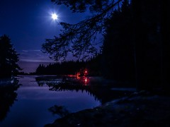 Moonlight shadows (xDigital-Dreamsx) Tags: long exposure mood moon moonlight moody mirror blue nightsky night naturephotography nature landscape landshaft trees tranquility plant plants bush water reflection loch lake lights silhouette november coth5 beecraigs scotland